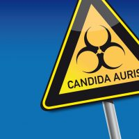 Candida auris Superfungus-protect yourself!